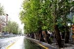 خیابان ولیعصر (عج)، یک گام به ثبت جهانی نزدیک شد