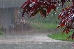 وزش باد شدید، کاهش دما و رگبار باران در راه خراسان رضوی