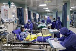 ۲۱۳ بیمار در بخشهای کرونایی استان بوشهر بستری هستند