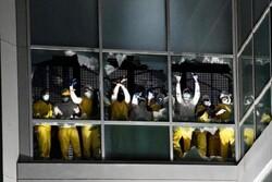 زندانیان زندان «سنت لوییز» در آمریکا شورش کردند