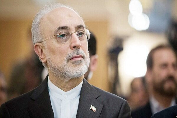 'Iran to boost nuclear acheivements under intl. regulations'