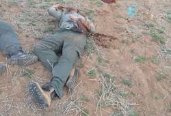 دو محیطبان زنجانی شهید شدند