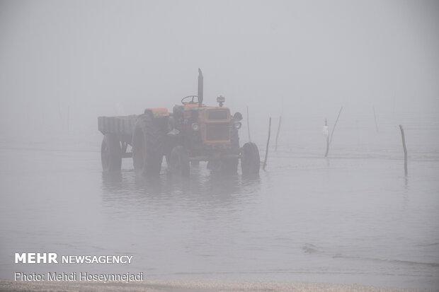 تورهای غیر مجاز ماهیگیری