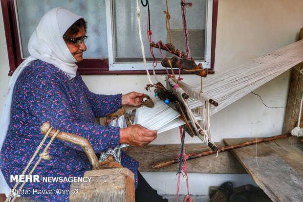 Tablecloth weaving in Mazandaran