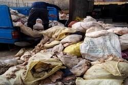 بیش از ۶ تن پوست مرغ در کرمانشاه کشف شد