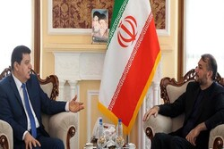 Iran to continue to support Syria firmly: Amir-Abdollahian