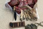 عوامل شکار غیر مجاز در مجن دستگیر شدند