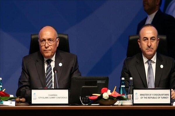 وزرای خارجه ترکیه و مصر گفتگو کردند