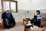 دبیرکل مجمع تقریب مذاهب اسلامی با آیت الله مدرسی دیدار کرد