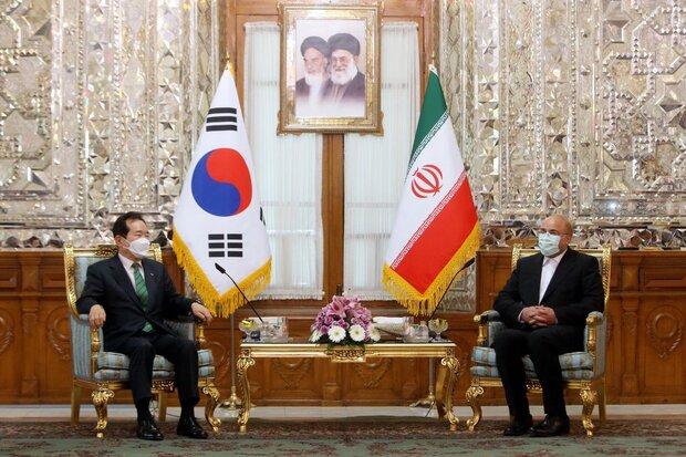 رئيس البرلمان الايراني يستقبل رئيس وزراء كوريا الجنوبية