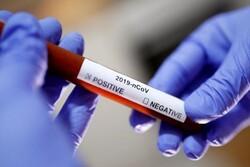 تسجيل 321 حالة وفاة جديدة بفيروس كورونا خلال 24 ساعة