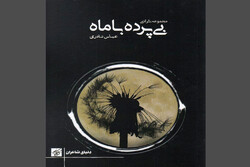 کتاب نثرهای ادبی «بیپرده با ماه» منتشر شد
