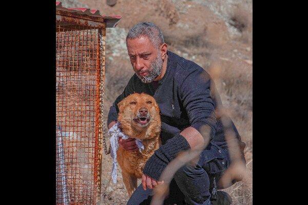 «سگ زرد» به صداگذاری رسید/ جنایت به خاطر گذشته سیاه