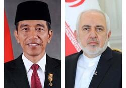 ایرانی وزیر خارجہ کی انڈونیشیا کے صدر سے ملاقات/ باہمی تعلقات کو فروغ دینے کا عزم