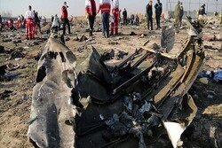 Politicizing Ukrainian plane crash deplorable, inhumane