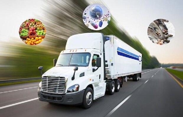 زنجیره حمل و نقل کالاهای منجمد به گسترش کرونا کمک می کند