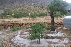 خسارت ۹۳ میلیاردی بارش تگرگ به باغات نی ریز