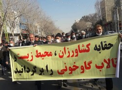 مطالبه کشاورزان اصفهان سیاسی نیست/اجازه سوء استفاده به دشمنان نمی دهیم