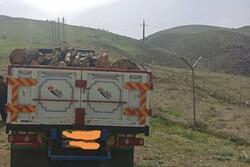 کامیون حامل چوب های قاچاق در منطقه حفاظت شده عبدالرزاق توقیف شد
