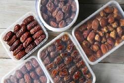میز خرما در دشتستان تشکیل میشود/ تلاش برای تثبیت قیمت مناسب