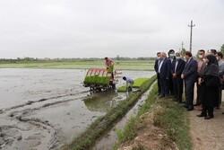 ضرورت مدیریت مصرف بهینه آب کشاورزی/ تقویم زراعی رعایت شود