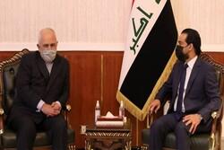 ظريف يجري مباحثات مع رئيس البرلمان العراقي