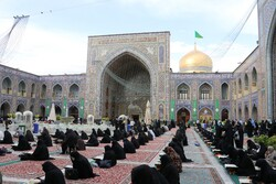 Recitation of Holy Quran in Imam Reza (PBUH) holy shrine