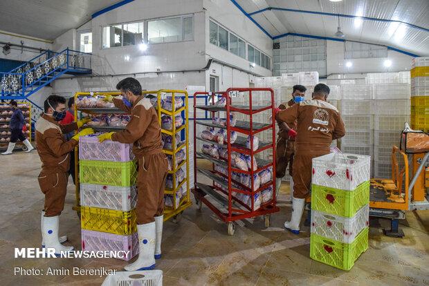 ارسال روزانه ۲۰ هزار تن محصول از مازندران به کشور