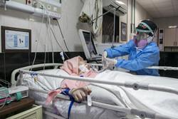 بستری ۳۴۶ بیمار در بخشهای کرونایی استان بوشهر/ ثبت ۴ فوتی جدید