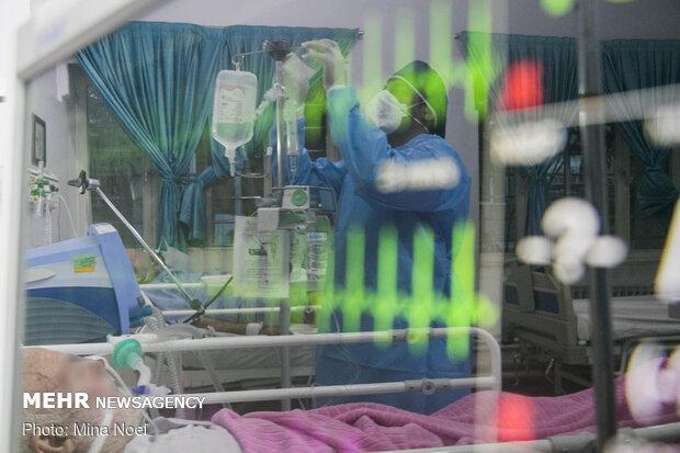 وضعیت وخیم ۱۴۴ بیمار مبتلا به کرونا در استان فارس