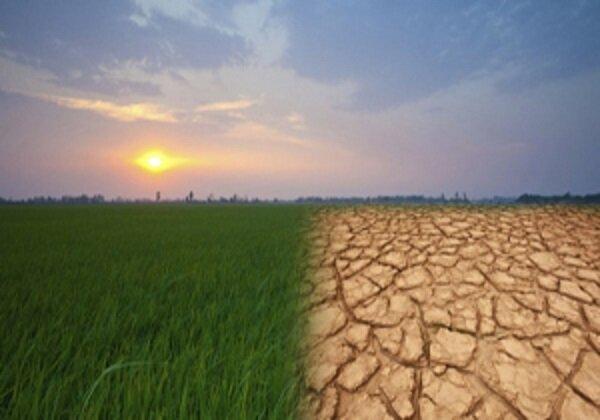 «کمال صالح» آب را به روی «مروک» بست/ باغات تلف شدند!