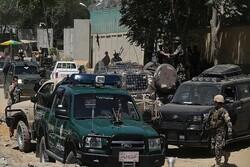 کابل: ۲۵۹ نفر از اعضای طالبان در مناطق مختلف افغانستان کشته و زخمی شدند