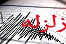 زلزله ۳.۷ ریشتری گناوه را لرزاند/ وقوع ۸ زمینلرزه طی ۲۴ ساعت