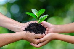 نقش مهرورزی و محبت در کاهش ناهنجاریهای فردی و اجتماعی/کمک مومنانه؛ ثبت انسانیت درحلقه نظام هستی