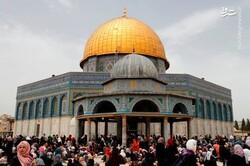 عقب نشینی رژیم صهیونیستی نتیجه ایستادگی ملت فلسطین است