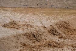 فعالیت سامانه بارشی اخیر در استان بوشهر طی ۴۰ سال گذشته بیسابقه بود