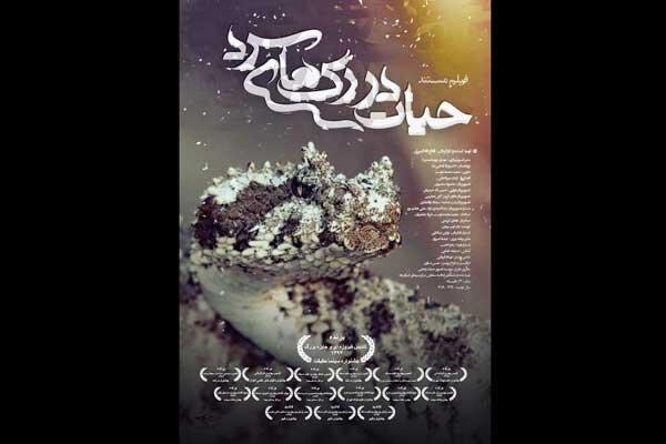 روایتی از زندگی اسرارآمیز خزندگان غرب ایران در شبکه مستند