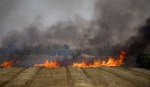 اندلاع 10 حرائق بغلاف غزة بفعل البالونات المباركة