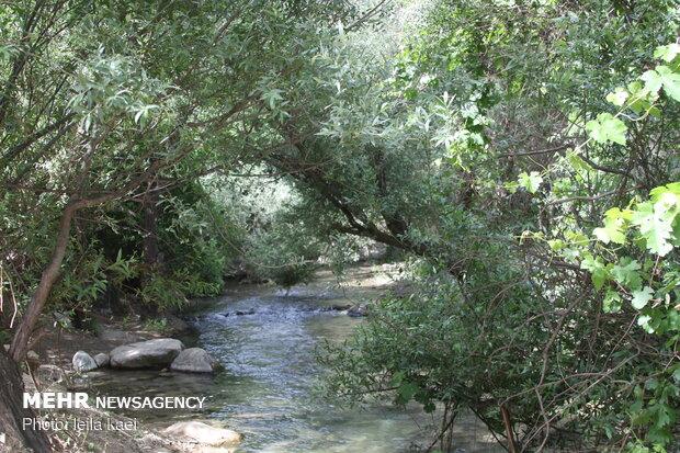Kolm-e Bala village in W Iran
