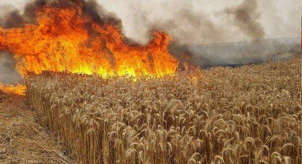 طائرات وبالونات حارقة تكبّد اسرائيل خسائر فادحة + صور