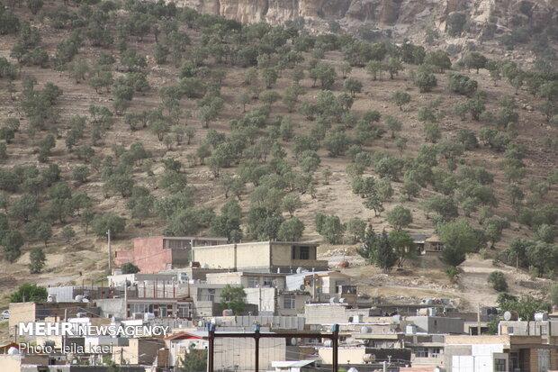 قلع و قمع کوههای اطراف شهر ایلام برای ساخت و ساز