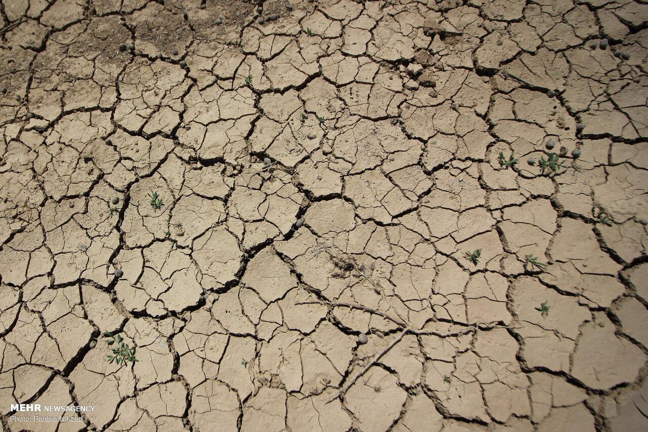 زخم خشکسالی بر تنِ دیار «چشمه و آب»/ دشتهایی که ممنوعه شد!