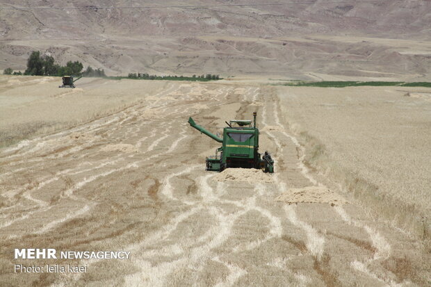 Iran eyes exporting agricultural products to Switzerland