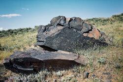 Alvend Dağı'nın resimli taşları