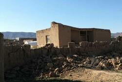 خسارت ۳۱ میلیارد ریالی زلزله به دامداران جاجرمی