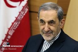 Ansarullah plays key role in advancing Yemen popular movement