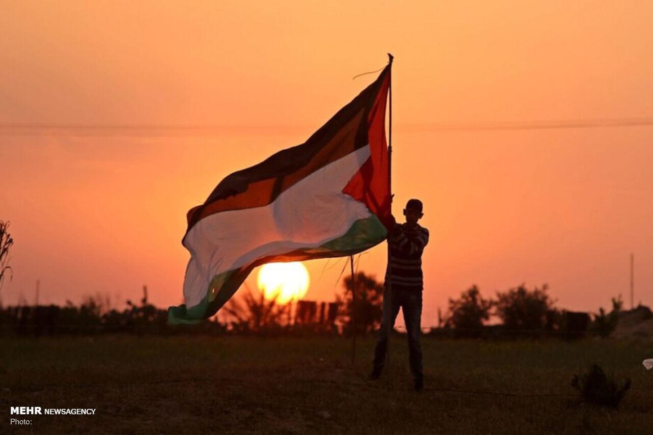 تراژدی «فلسطین» را «مستند» روایت کنیم/ تیتراژهایی که حذف میشود!