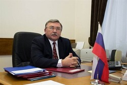 Vienna talks may be completed early June: Ulyanov