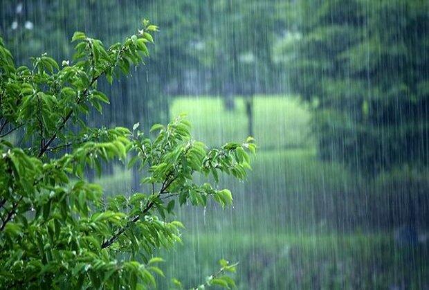 بارندگی در زنجان ۳۸ درصد کاهش دارد
