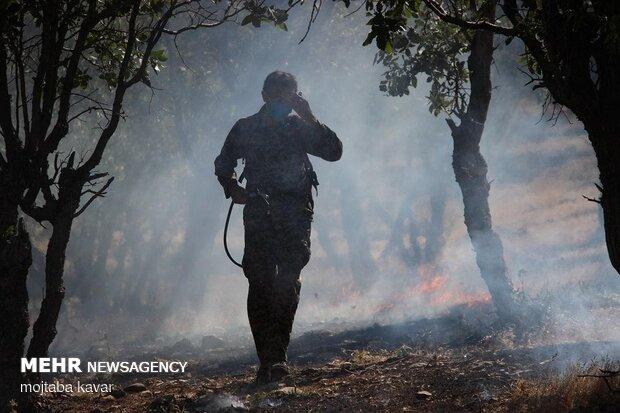Firefighting maneuver in Ilam prov.